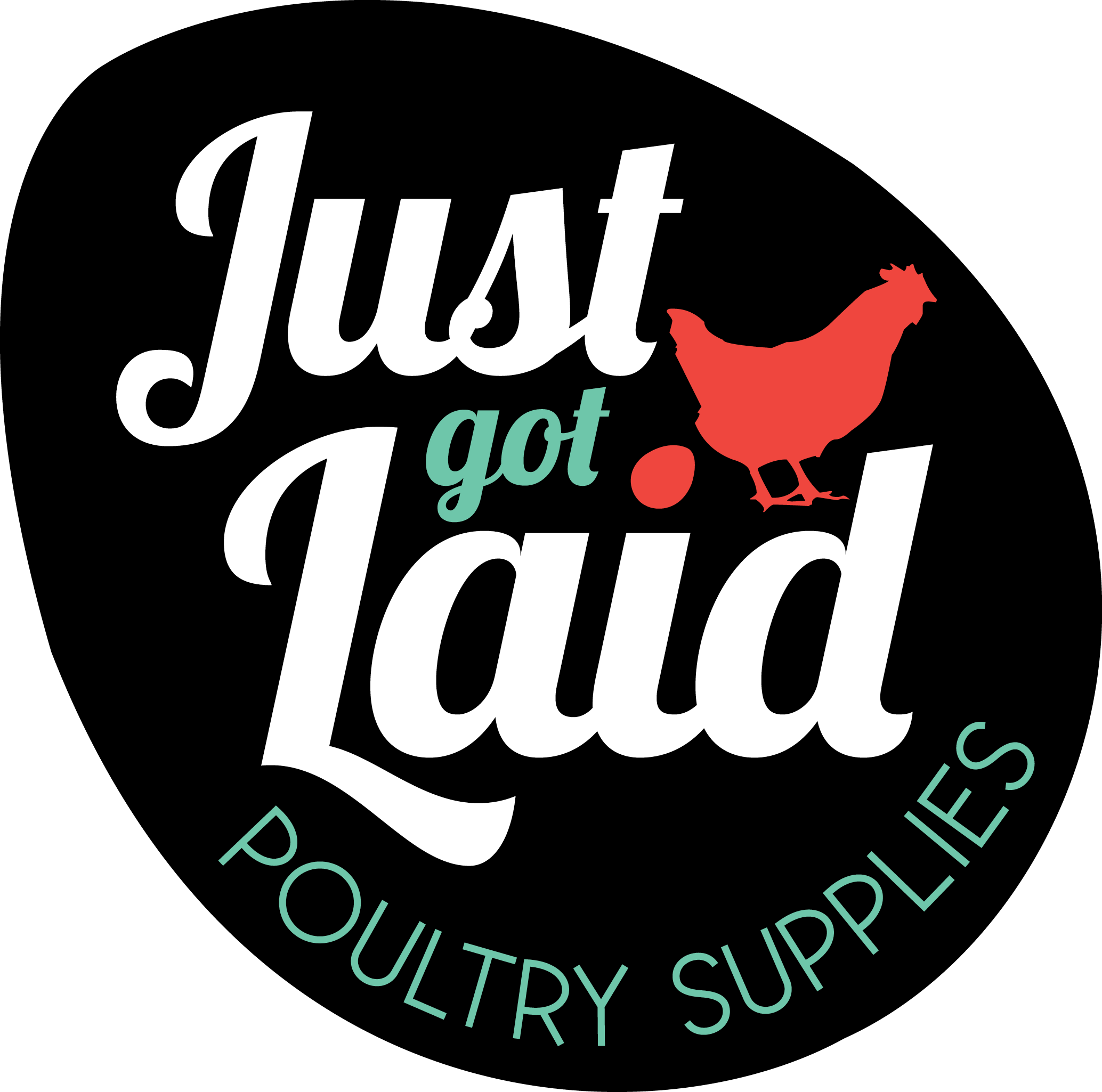 Just Got Laid Poultry Supplies & Q Stockfeeds